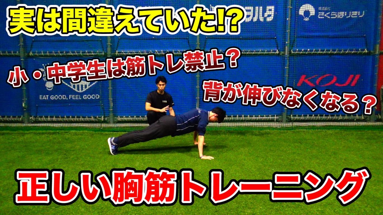 腕立て伏せは、どこでも、誰でもできる、エクササイズの優れもの!のサムネイル