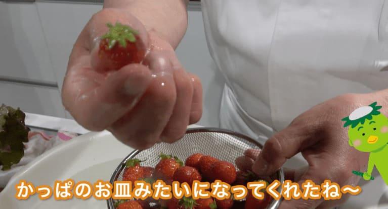 いちごは50度洗いするとヘタが立ってきてかっぱのお皿みたい!